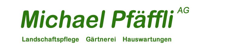 Michael Pfäffli AG